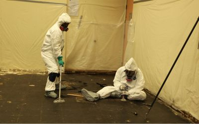 Asbestos Testing Kits – What Are They and How Do They Work?